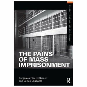 Details about The Pains of Mass Imprisonment (Framing 21st Century Social  Issues), Longazel, J