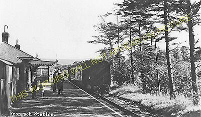 Arenig Railway Station Photo Cwm Prysor Frongoch 3 Blaenau Festiniog Line.