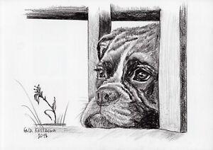 Sad-Dog-original-Gala-Kostroma-boxer-watercolor-animal-drawing-pet-painting-art