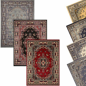 Traditional Oriental Medallion Area Rug Persien Style