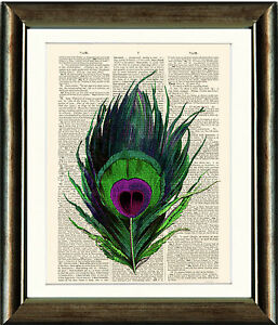 Old-Antique-Book-page-Art-Print-Peacock-Feather-Dictionary-Page-Wall-Art