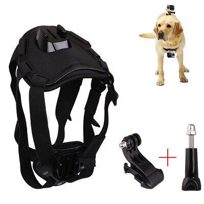 Dog Hound Fetch Harness Chest Belt Strap Mount for GoPro 6 5 4 3 2 SJ4000 Camera