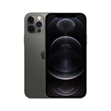 Apple iPhone 12 Pro Max 5G 256GB Graphite (Verizon) MG9F3LL/A (A2342) Smartphone