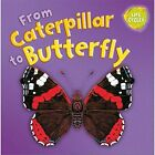 From Caterpillar to Butterfly by Gerald Legg (Paperback, 2014)