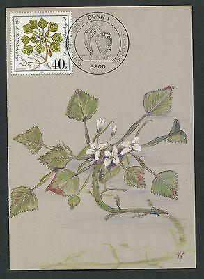 & Wasserpflanzen Maximumkarte Maximum Card Mc Cm D5692 Herausragende Eigenschaften Herrlich Brd Mk 1981 Flora Moor Diverse Philatelie Natur & Pflanzen