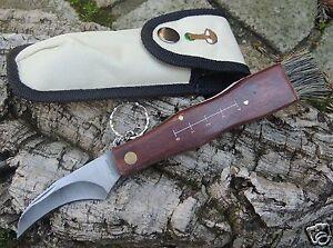 Albainox-Pilzmesser-Mushroom-Knife-Schwammerlmesser-Buerste-und-Pinzette-10505
