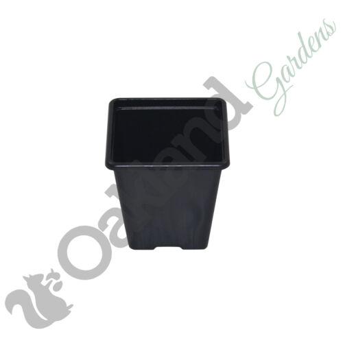 """2.5/"""" 500 x 7cm Square Plant Pots Black Plastic 7cm Deep Pot"""