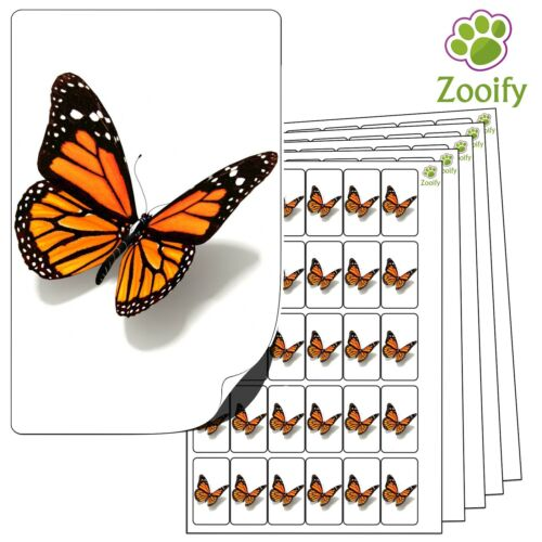 480 Butterfly Stickers High Quality Self Adhesive Animal Labels By Zooify.