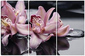 Quadro quadri moderno arredo casa salotto soggiorno 3pz orchidea