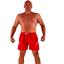Indexbild 3 -  Badeshorts Badehose Sport Herren Shorts plus size L XL 2XL 3XL Männer Bermuda 8