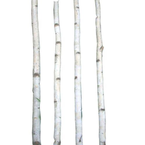 4 Thin White Birch Poles 8/'
