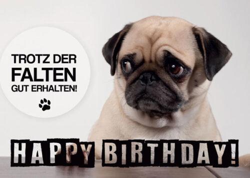 """Geburtstagskarte von Möpsle - """"Trotz Falten gut erhalten"""" - Mops - Pug"""