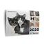 2020-Cat-Calendar-Ten-Lives-Cat-Centre-Fundraising-Calendar thumbnail 1