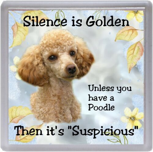 """Apricot Poodle Dog Coaster /""""Silence is Golden unless you ..../"""" by Starprint"""