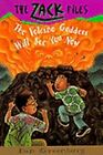The Volcano Goddess Will See You Now by Dan Greenburg (Paperback)