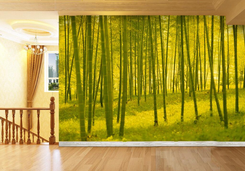 3D Im Wald 58533 Fototapeten Wandbild Fototapete BildTapete Familie DE
