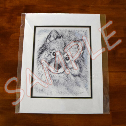 Schipperke Dog Original Art Print 8x10 Matted to 11x14