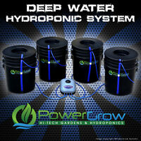 Deep Water Culture System Dwc Hydroponic Powergrow 4 Bucket Kit - 6 Basket Lids