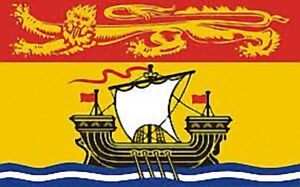 Large-3-039-x-5-039-High-Quality-100-Polyester-New-Brunswick-Flag-Free-Shipping