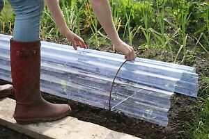 Pair of Metal Cloche Hoops Rusted Border Edging Kitchen Garden