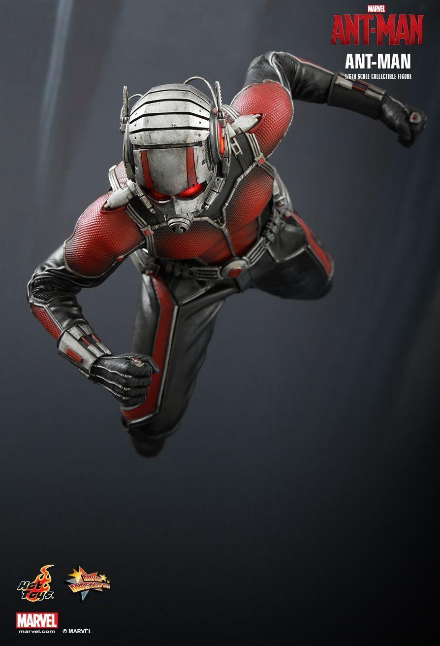 (ES) HOT TOYS 1 6 MMS308 MARVEL ANT-MAN SCOTT LANG MASTERPIECE Acción Figura