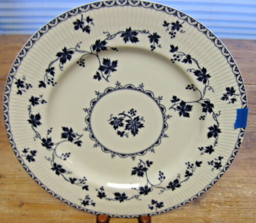 Missing Color 1 Dinner Plate Royal Doulton Yorktown Blue White Grapevine 1013