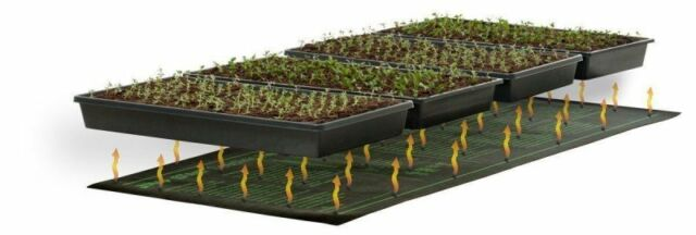 Heat Mat For Propagation Seedlings Propagators Hot Beds Thermostats Uk Er