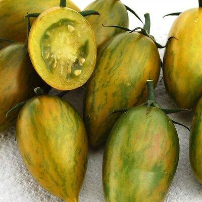 VEGETABLE TOMATO CHERRY ARTISAN GREEN TIGER 10 FINEST SEEDS
