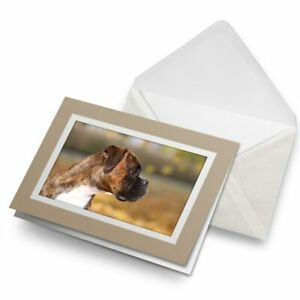 Greetings-Card-Biege-Cute-Boxer-Puppy-Dog-Pet-Fun-2694