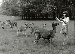 Maria-Prado-With-Deer-Vintage-Press-Photo-Norbert-Unfried-U-8465