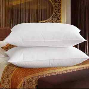 Queen Size 100 Goose Down Filled Pillow 1800tc Egyptian