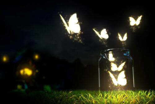 Glowing Butterflies Flying Out a Glass Jar Picture Poster Art Framed Print