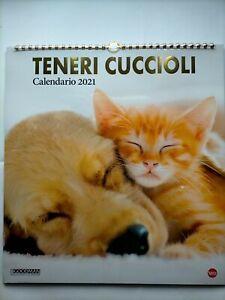 Calendario 2021 Teneri Cuccioli | eBay