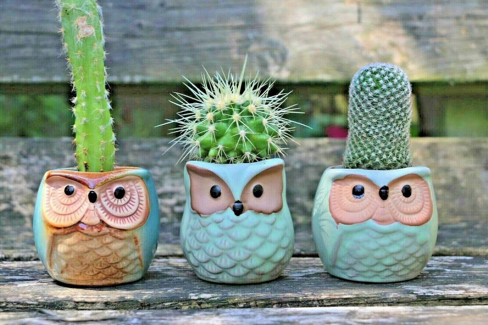 Owl Planters Ceramic Flower Pots Succulent Pots Set of Three