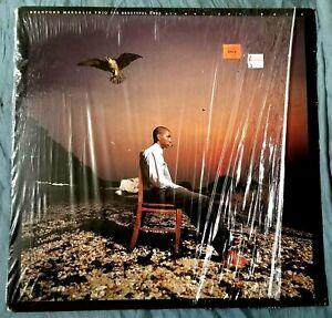 BRANFORD MARSALIS TRIO VINYL LP THE BEAUTIFUL ONES ARE NOT YET BORN 1991 RARE