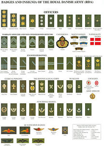 Details about A3 Poster - Badges and Insignia of the Royal Danish Army  (Picture Emblems Ranks)