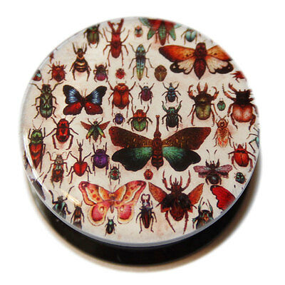 Butterflies, Bugs and Beetles Acrylic Screw-Fit Ear Plug Flesh Tunnel 10mm - 22m