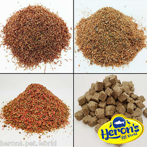Herons freeze dried bloodworm larvae daphnia tubifex for Bloodworms fish food