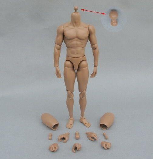 █ Custom Ver 2.0 Muscular Body 1/6 for Hottoys Head Sculpt Narrow Shoulder TTM19