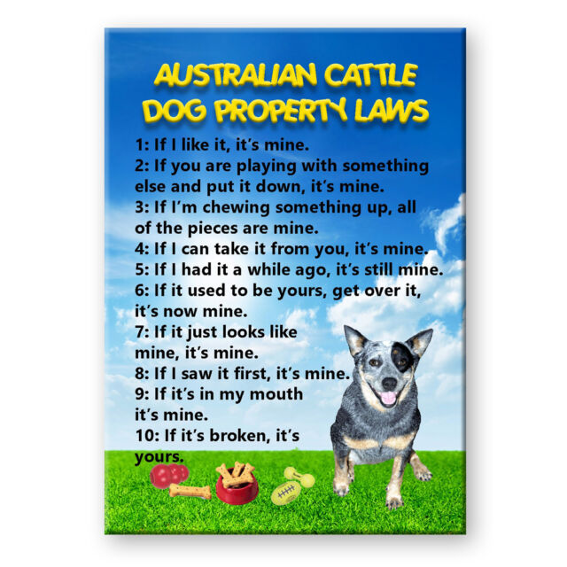 AUSTRALIAN CATTLE Property Laws Magnet Personalized With Your Dog/'s Name #3
