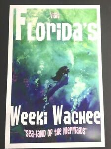 WEEKI-WACHEE-Florida-Mermaids-12x18-Print-by-Mike-Hoffman