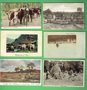 #D445.  #5.  LOT OF SIX (6) POSTCARDS -   BRITISH & AUSTRALIAN FARMING