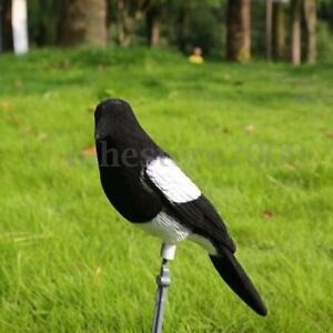 Flocked-Decoy-Fake-Magpie-Shooting-Trap-Cage-Bird-Painted-Hunting-Tool