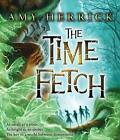 The Time Fetch by Amy Herrick (CD-Audio, 2013)