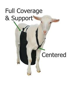 Anti Mating Anti Breeding OLOR™ Buck Apron with Harness for Goats//Sheep MEDIUM