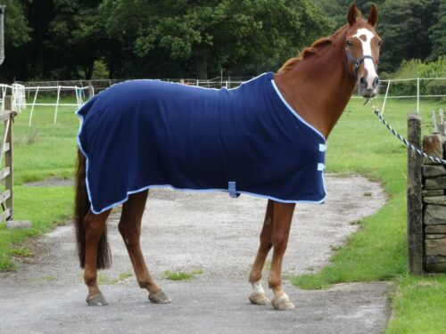 """NEW Stunning Navy show cover 5/'3-6/'9/"""" travel fleece cooler stable horse rugs"""