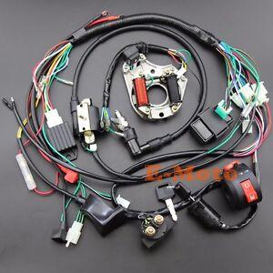 pit bike wiring harness full electrics wiring harness 50 70 90 110 125cc atv quad pit bike  50 70 90 110 125cc atv quad pit bike