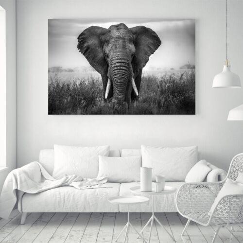 Elephants Silk Canvas Poster Art Black White Painting Wall Decor A381 Unframed