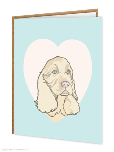 Dog Lovers Brainbox Candy Cute Birthday Spaniel Greetings Card