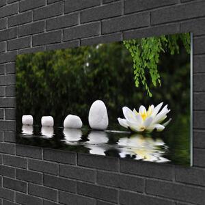 Glasbilder Wandbild Druck auf Glas 125x50 Steine Gras Kunst